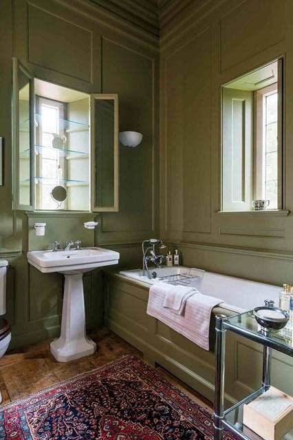 Дизайн в оливкових кольорах з ванною