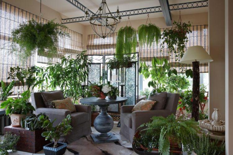 Тропічна тематика в озелененні житла