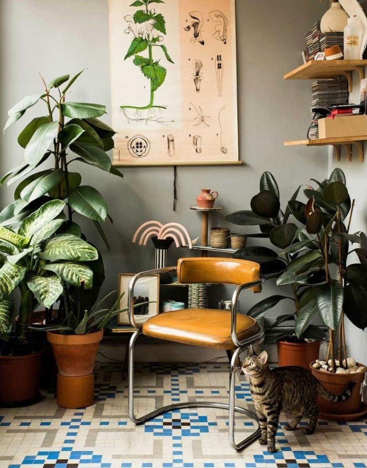 Класичні декоративні рослини в інтер'єрі вітальні