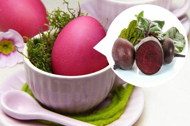 Буряк - природний барвник для фарбування яєць до Великодніх світ