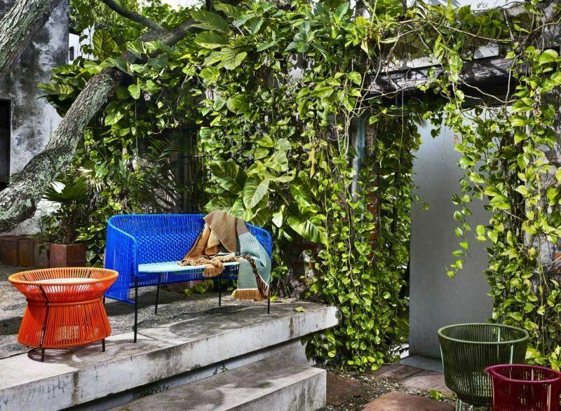 Стіни тераси, декоровані виткими рослинами